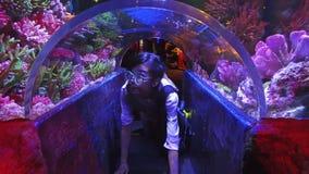 A menina tailandesa asiática bonito está rastejando sob pouco underwater de vidro do túnel de um aquário com recife de corais tro filme