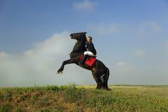 A menina treina o cavalo Foto de Stock Royalty Free