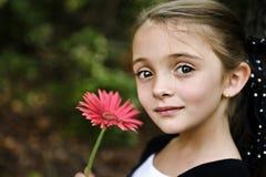 Menina triguenha bonita Fotos de Stock