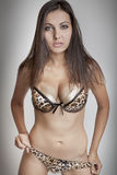 Menina triguenha 'sexy' no sutiã, peitos grandes Foto de Stock