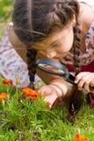 A menina vê flores através da lupa Imagens de Stock