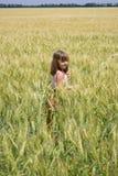 A menina vai em um campo de grão imagem de stock