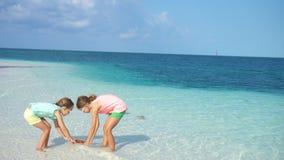 Meninas adoráveis com as estrelas do mar na praia vazia branca vídeos de arquivo