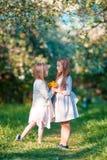 Meninas adoráveis no jardim de florescência da maçã no dia de mola ensolarado Imagem de Stock Royalty Free