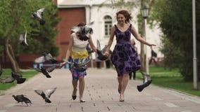 Meninas atrativas, corrida com a dispersão do parque, amedrontar e pombos do scatter A amiga passa o tempo junto vídeos de arquivo
