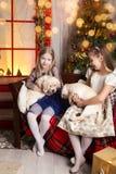 Meninas bonitos que guardam cachorrinhos de Labrador fotos de stock royalty free