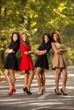 Meninas da beleza Fotos de Stock Royalty Free