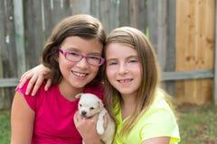 Meninas da criança que jogam com a chihuahua do animal de estimação do cachorrinho Foto de Stock Royalty Free