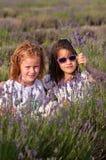 Meninas de Youn com flores da alfazema Fotografia de Stock Royalty Free