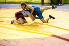 Meninas do lutador Foto de Stock Royalty Free
