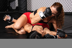 Meninas do lutador de MMA fotografia de stock royalty free