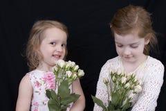 Meninas e rosas Foto de Stock Royalty Free