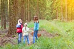 Meninas em um saque do cogumelo fotografia de stock royalty free