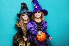Meninas em um terno de uma bruxa Halloween fairy tale Retrato do estúdio no fundo azul fotografia de stock