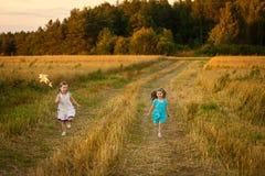 Meninas felizes no campo de trigo na noite morna e ensolarada do verão imagens de stock royalty free