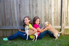 Meninas gêmeas da irmã que jogam o cão do smartphone e da chihuahua Fotos de Stock