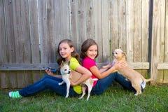 Meninas gêmeas da irmã que jogam o cão do smartphone e da chihuahua Fotografia de Stock Royalty Free