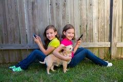 Meninas gêmeas da irmã que jogam o cão do smartphone e da chihuahua Imagem de Stock Royalty Free