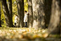 Meninas no parque do outono Fotos de Stock