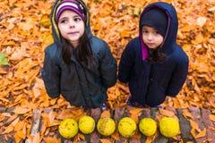 Meninas no parque do outono Imagens de Stock