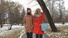 Meninas no parque nevado filme