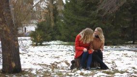 Meninas no parque nevado video estoque