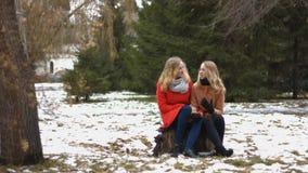 Meninas no parque nevado vídeos de arquivo