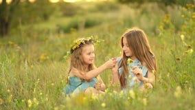 Meninas no prado do verão