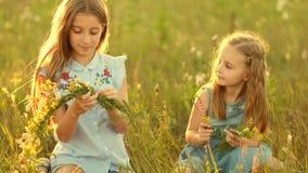 Meninas no prado do verão vídeos de arquivo