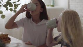 Meninas pequenas adoráveis do albino que bebem o chá e que olham se que ri em casa Conceito da amizade carefree video estoque