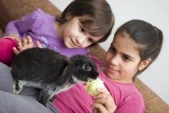 Meninas que alimentam lhe o coelho do animal de estimação fotos de stock royalty free