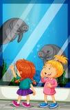 Meninas que olham a natação do peixe-boi no tanque ilustração stock