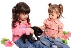 Meninas que prendem o gatinho Fotografia de Stock