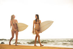 Meninas 'sexy' bonitas do surfista na praia Imagem de Stock Royalty Free