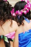 Meninas tropicais imagem de stock