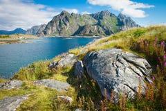 Mening aan bergen in Noorwegen, Lofoten Royalty-vrije Stock Foto's