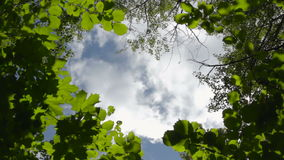 Mening aan de blauwe hemel met het runnen van witte wolken stock video