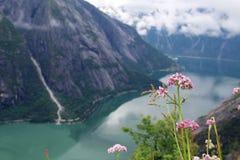 Mening aan Eidfjord van Kjeansen-landbouwbedrijf, Noorwegen Stock Afbeelding