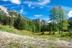 Mening aan mooie Alpen in Slovenië Royalty-vrije Stock Afbeeldingen