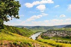 Mening aan rivier Moezel en Marienburg-Kasteel dichtbij dorp Puenderich - de wijngebied van Moezel in Duitsland stock afbeeldingen