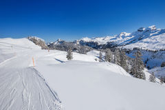 Mening aan Skiërs over de skihellingen en de Zwitserse die Alpen door vers worden behandeld Royalty-vrije Stock Foto