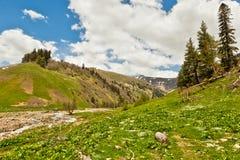 Mening aan sneeuw op de bergen van de Kaukasus dichtbij Arkhyz Royalty-vrije Stock Afbeeldingen