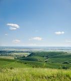 Mening aan wijngaarden royalty-vrije stock fotografie