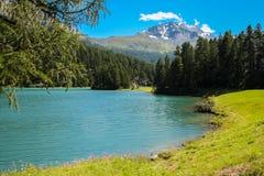 Mening bij de bergen die Maloja Zwitserland in de zomer omringen royalty-vrije stock afbeelding