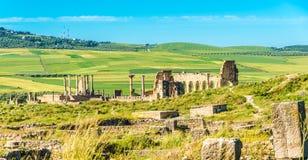 Mening bij de ruïnes van Volubulis - Marokko stock fotografie