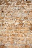 Mening bij oude muur Royalty-vrije Stock Fotografie