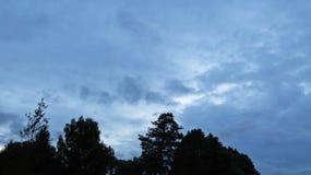 Mening bij Panorama van Donkere Onweerswolken op de Hemel met Bomen Royalty-vrije Stock Foto