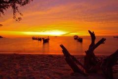 Mening bij Zonsopgangstrand op zonsopgangtijd Royalty-vrije Stock Afbeeldingen