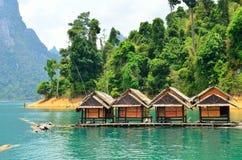 Mening in Chiew Larn Lake, Khao Sok National Park, Thailand royalty-vrije stock foto