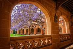 Mening door de gang in Sydney University Quadrangle in 2015 Royalty-vrije Stock Foto